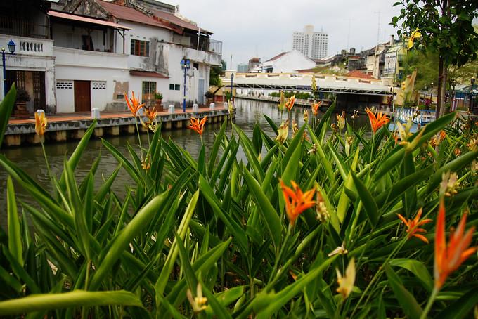 Scenic riverside views from Melaka, Malaysia