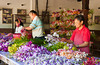Workers preparing orchids for shipment from Orchid Valley in southern Malaysia.