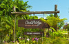 The sign for the Orchid Valley nursery in southern Malaysia.