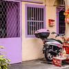 Purple Door, Pink Bike