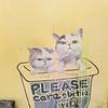 Please Care