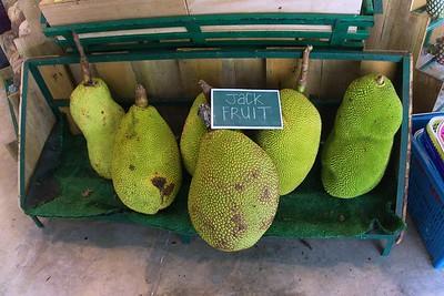 Jackfruit of Penang - Nangka - Kathal