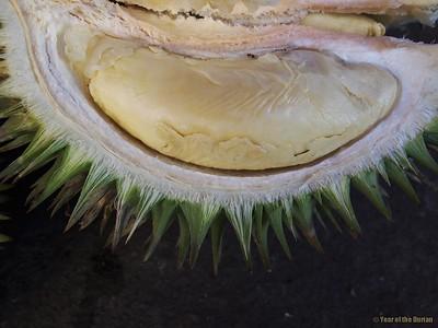 Ranau Durian Market, Sabah Malaysia