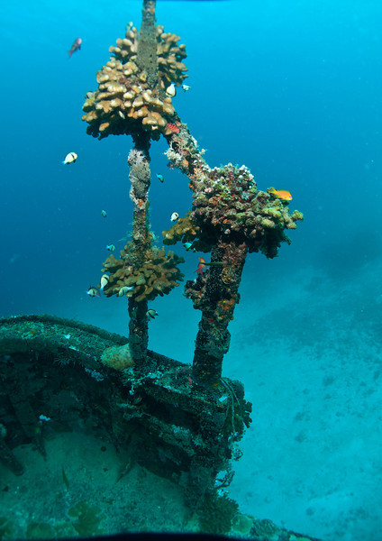 West Rock wreck, Male atoll, Maldives