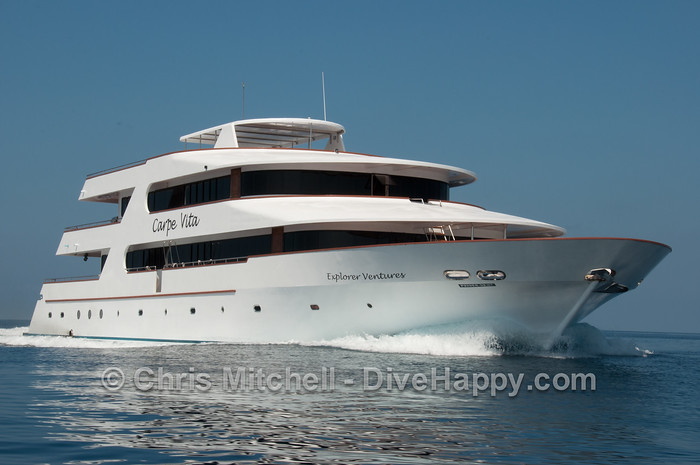 MV Carpe Vita – Maldives Liveaboard Review