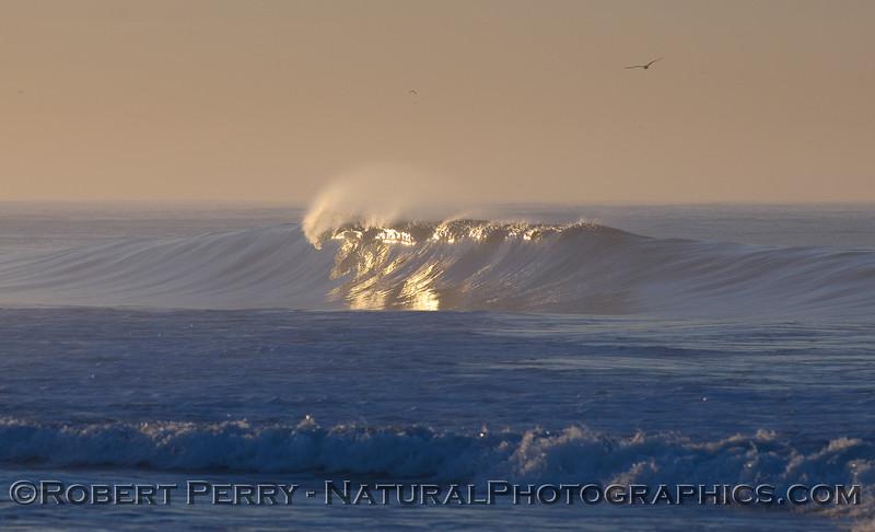 wave 2 - dawn