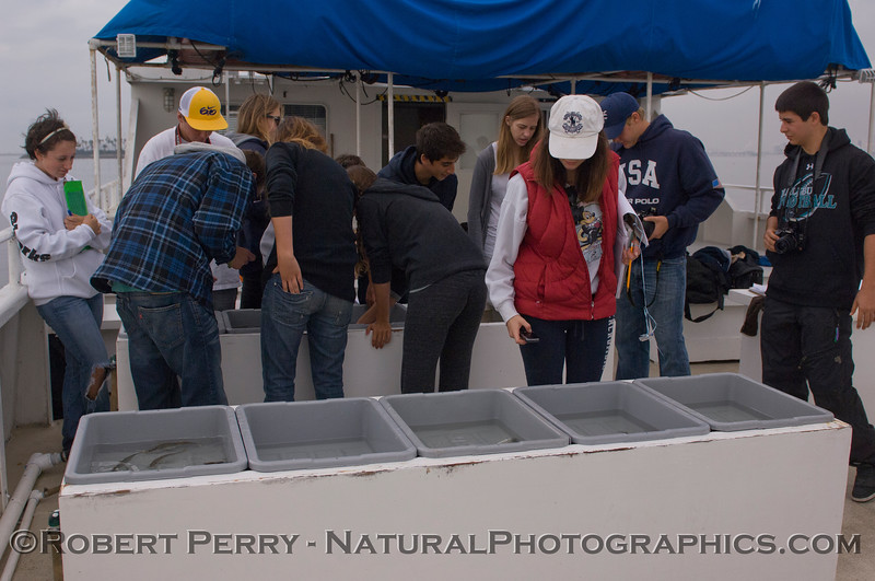 students on RV Challenger 2011 10-25 Long Beach  a - 010