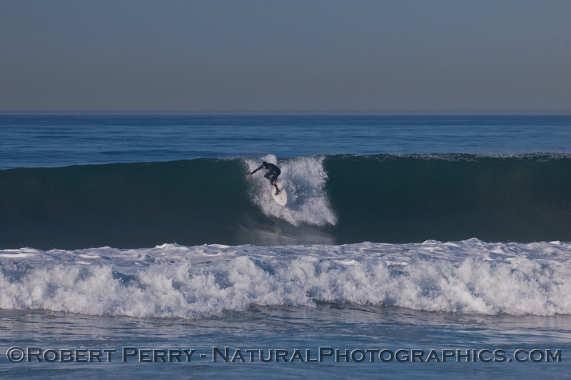 surfer 2012 02-09 Zuma-299