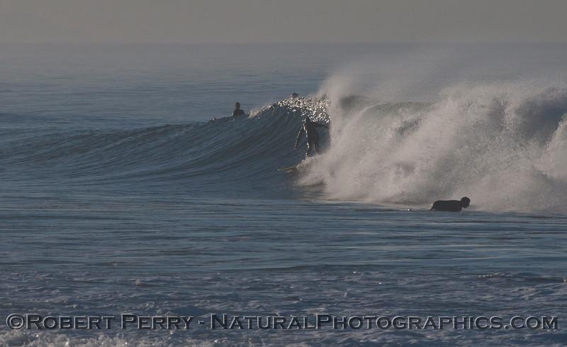 surfer 2012 02-09 Zuma-210