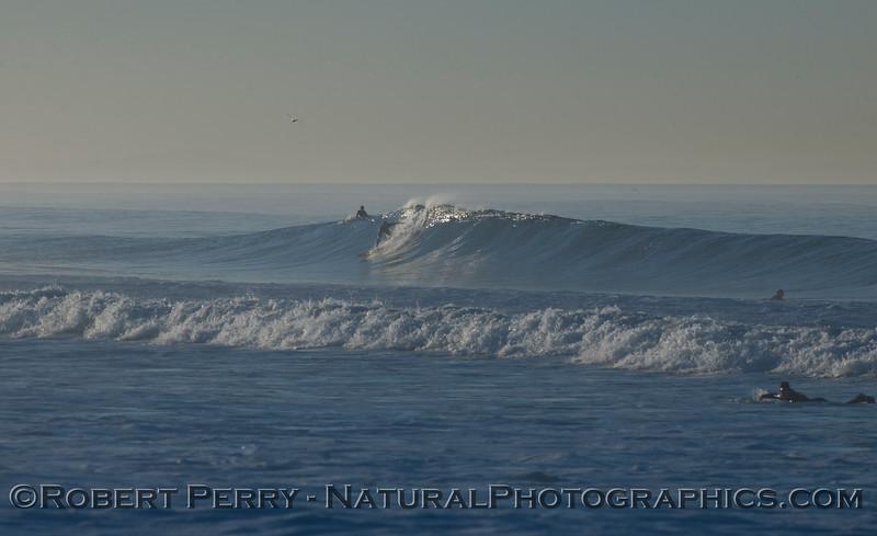 surfer 2012 02-09 Zuma-139