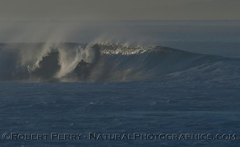 surfer 2012 02-09 Zuma-084