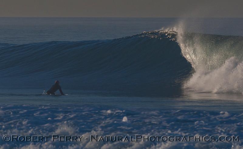 surfer 2012 02-09 Zuma-116
