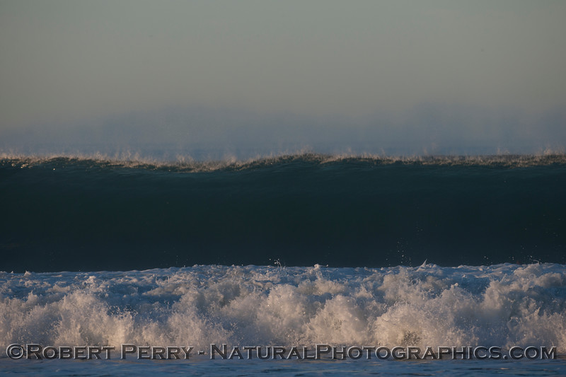 wave 2012 02-09 Zuma-010
