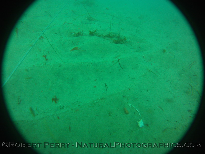 Zone 3 2012-03-08-0113