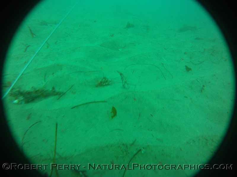 Zone 3 2012-03-08-0109