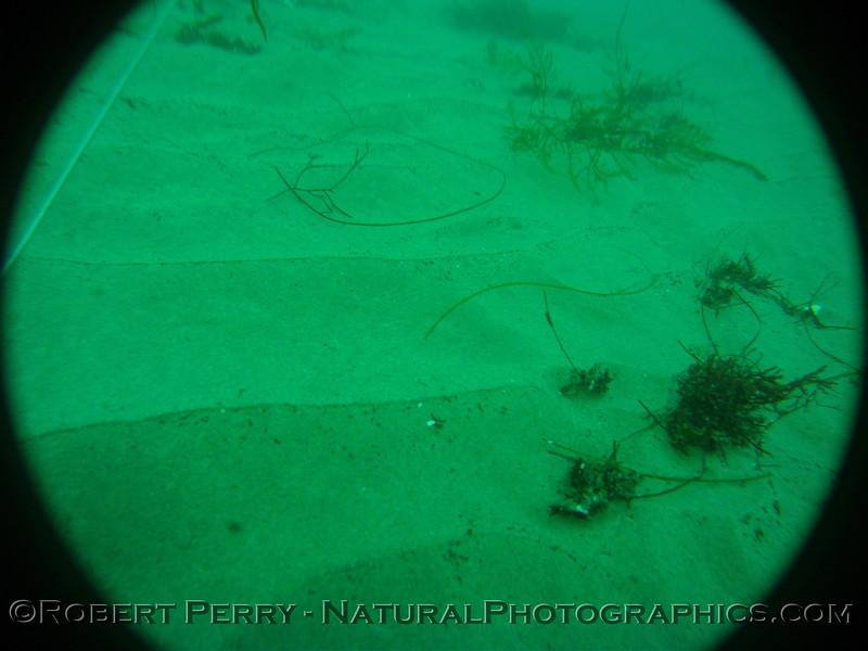 Zone 3 2012-03-08-0466