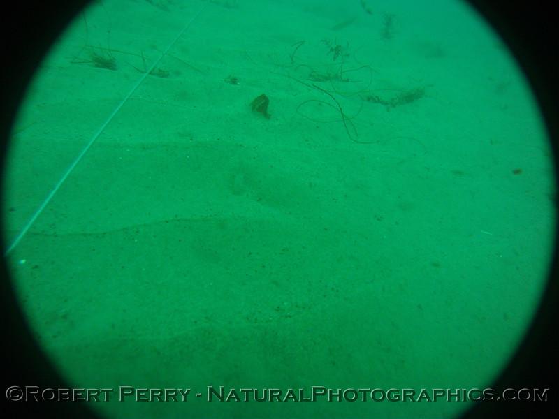 Zone 3 2012-03-08-0390