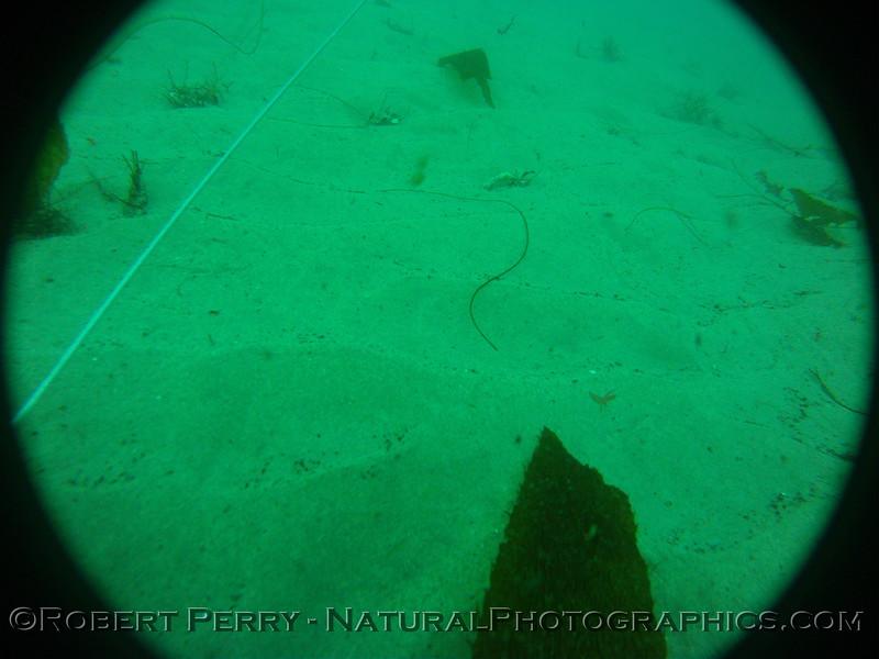Zone 3 2012-03-08-0309