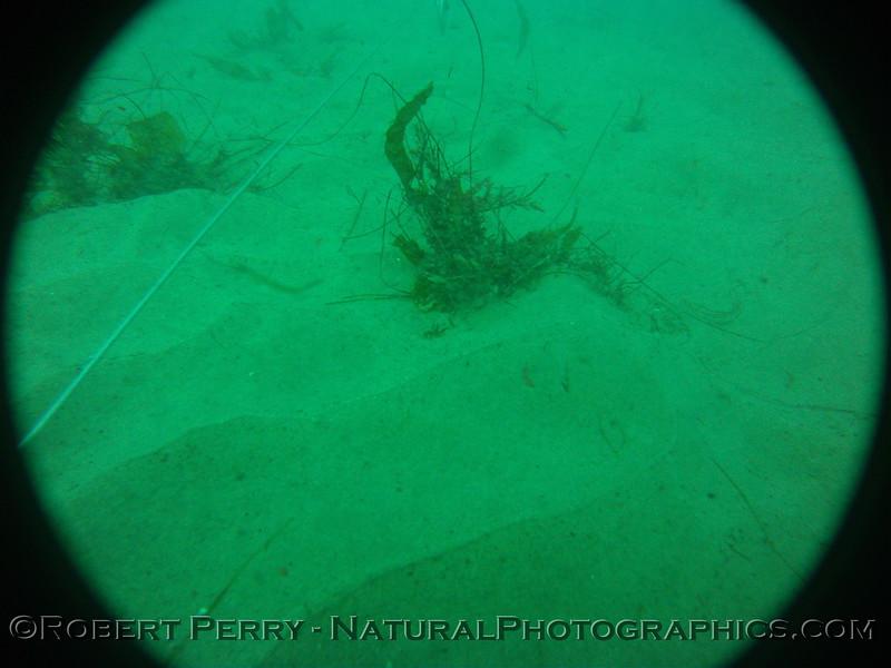 Zone 3 2012-03-08-0195