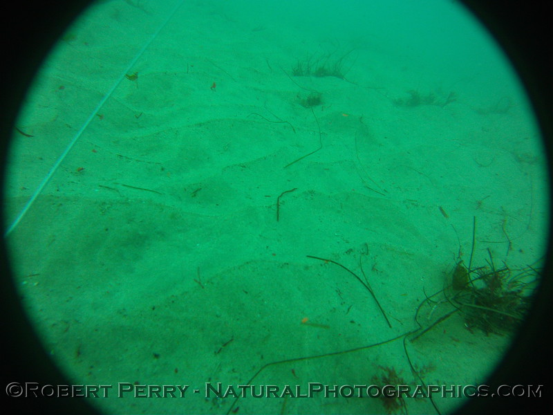 Zone 3 2012-03-08-0143