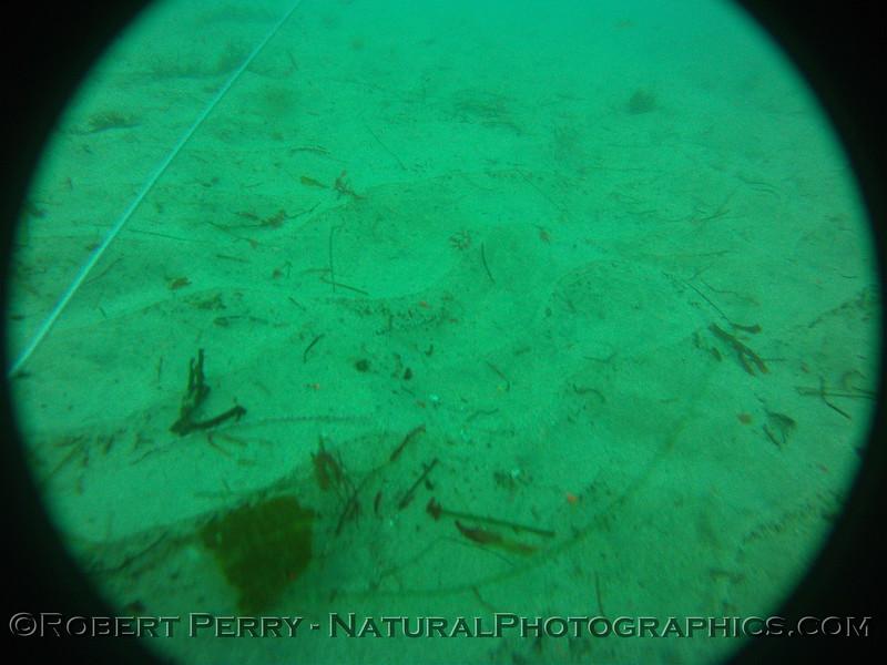 Zone 3 2012-03-08-0097