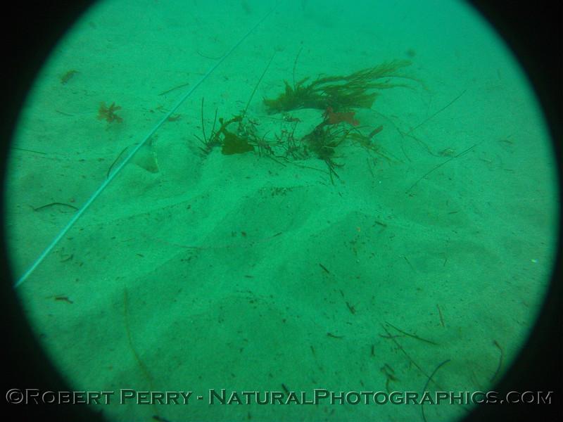 Zone 3 2012-03-08-0117