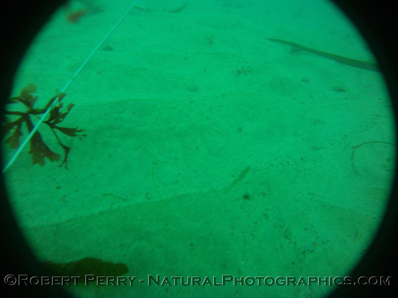 Zone 3 2012-03-08-0252