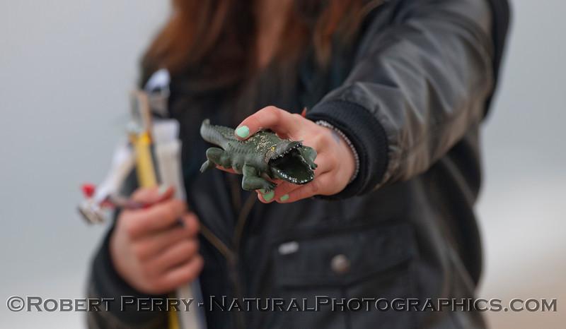 alligator toy found on beach 2012 04-19 Zuma-040