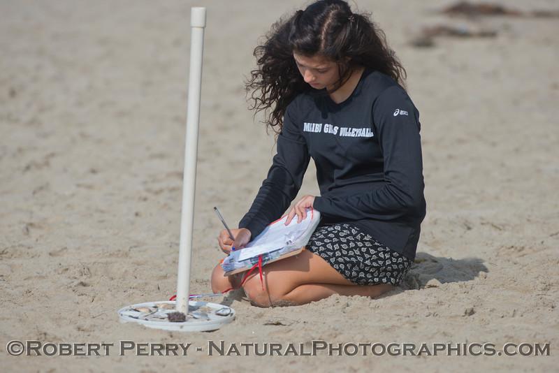 Student records animal debris data.