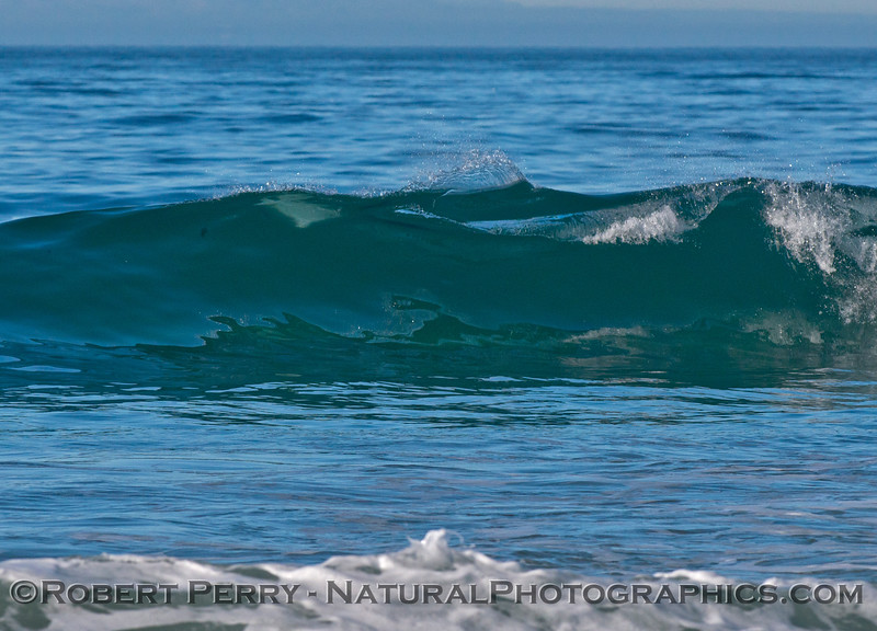 An interesting slashing wave pattern that was caused by a bottlenose dolphin (<em>Tursiops truncatus</em>) kicking out the back of a wave it had been riding.