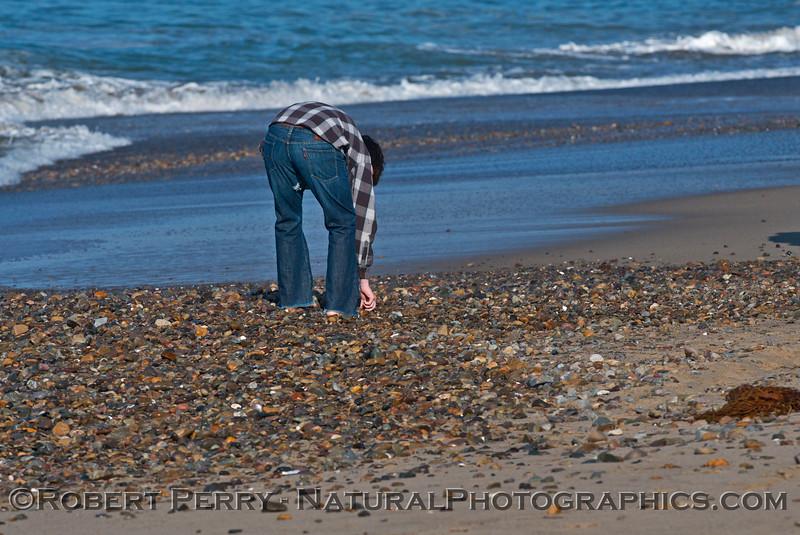 sand loss pebbles and shells exposed 2014 03-13 Zuma-005