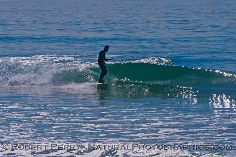 surfer 2013 01-31 Zuma-003
