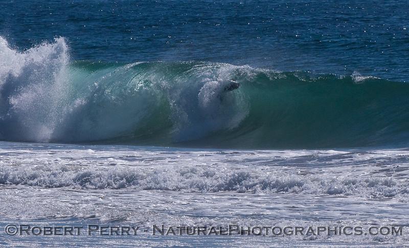 A surfer in heaven.