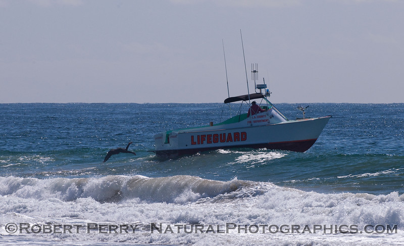 An LA County Lifeguard takes a dive into the surf from the swimstep of the vessel Baywatch Malibu.