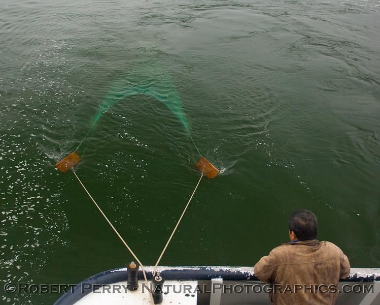 Otter Trawl 2011 10-25 Long Beach  a - 002