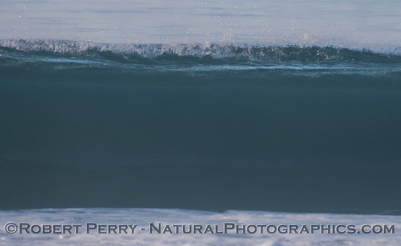 wave 2012 01-12 Zuma-069