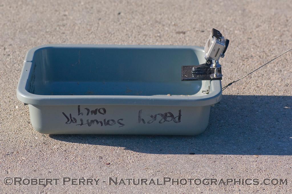 sled lateral 2012 01-12 Zuma-a-055