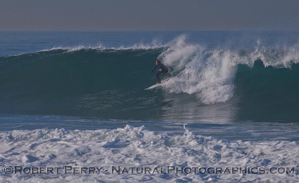 surfer 2012 02-09 Zuma-313