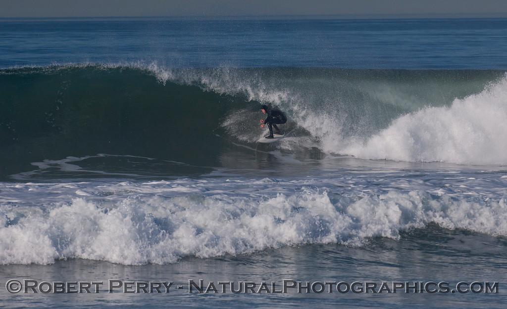 surfer 2012 02-09 Zuma-303