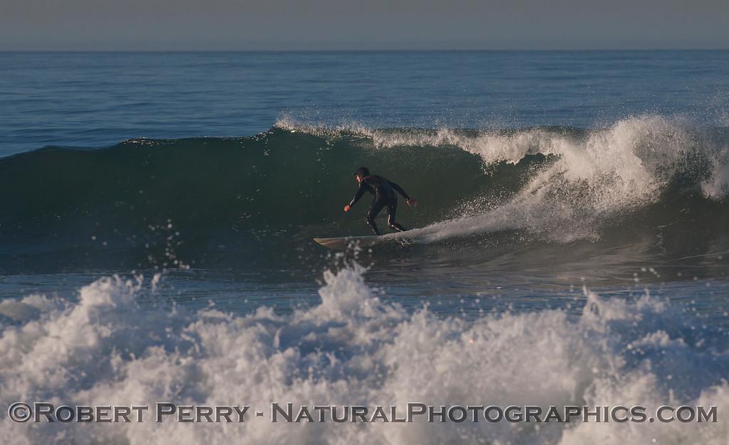 surfer 2012 02-09 Zuma-170