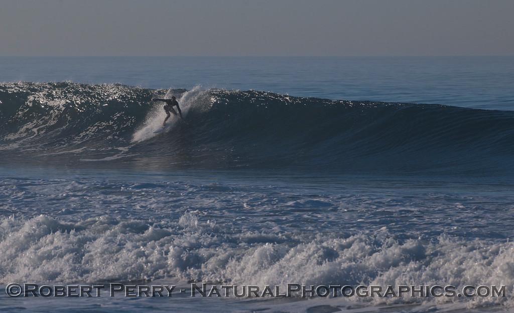 surfer 2012 02-09 Zuma-212
