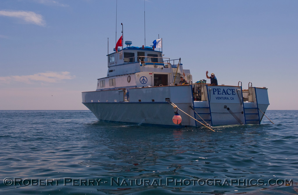 vessel Peace at anchor 2012 05-20 SB Channel-c-011