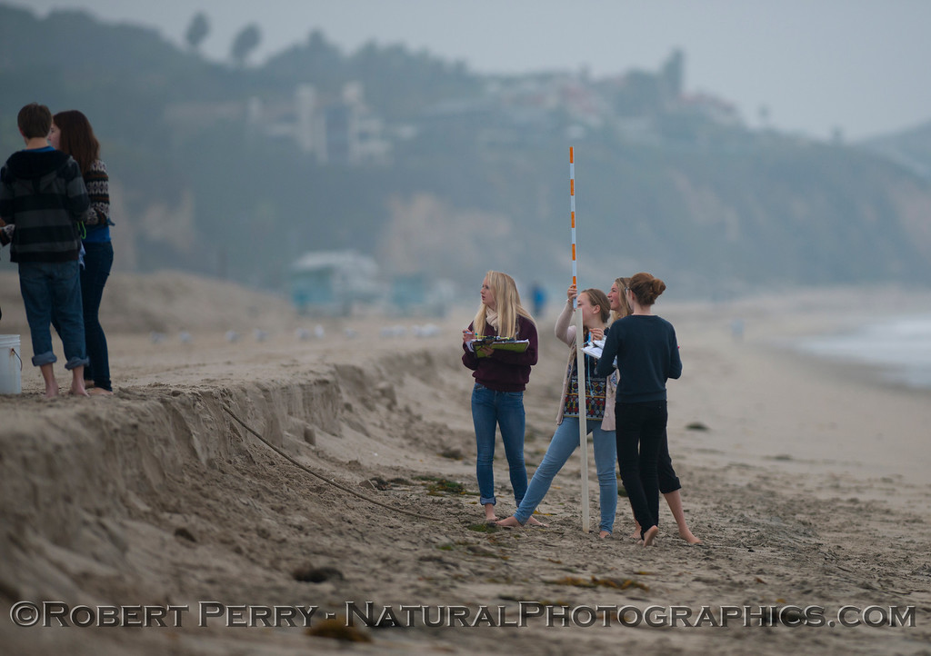Beach profile apparatus with small sand berm.<br /> Female scientists at work.