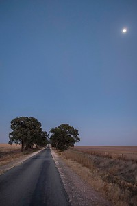 Full moon before sunrise. TheMalleeis an ill-defined region of theAustralianstateofVictoria. The district covers the most northwesterly district in the state bounded by theSouth AustralianandNew South Walesborders and is cross crossed by kilometres of long straight roads.