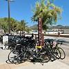 Road biking very popular