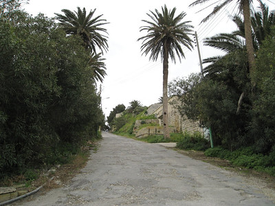 Museum Stn 12 Road towards Rabat Mar 08