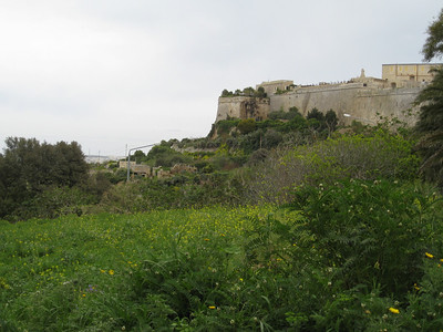 Mdina from Museum Stn Road Mar 08