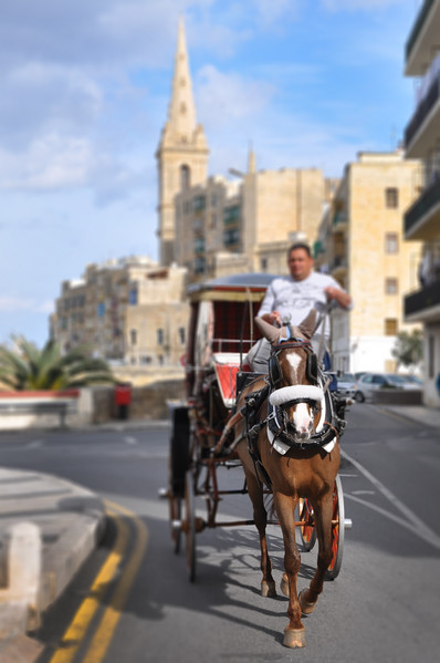Horse Carriage in Valletta. 2018.