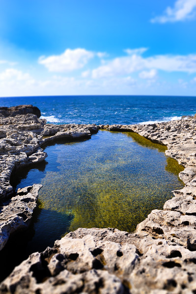 Tidal Pool in Dwejra. 2018.