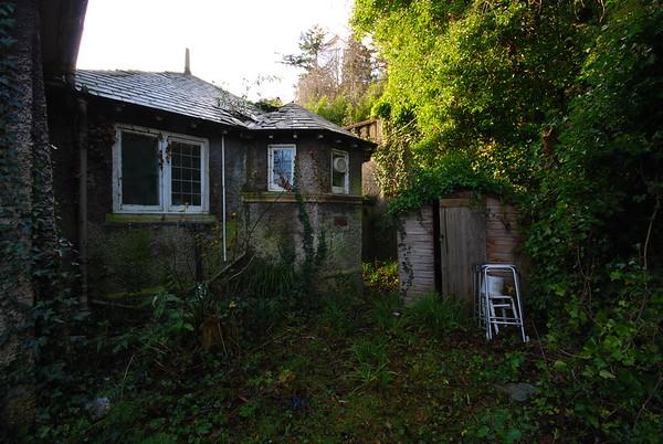 Sad overgrown shed.
